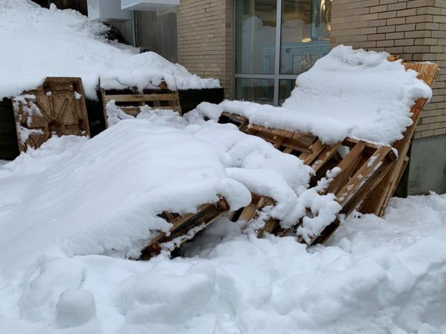 Pallet Removal in Waltham, MA