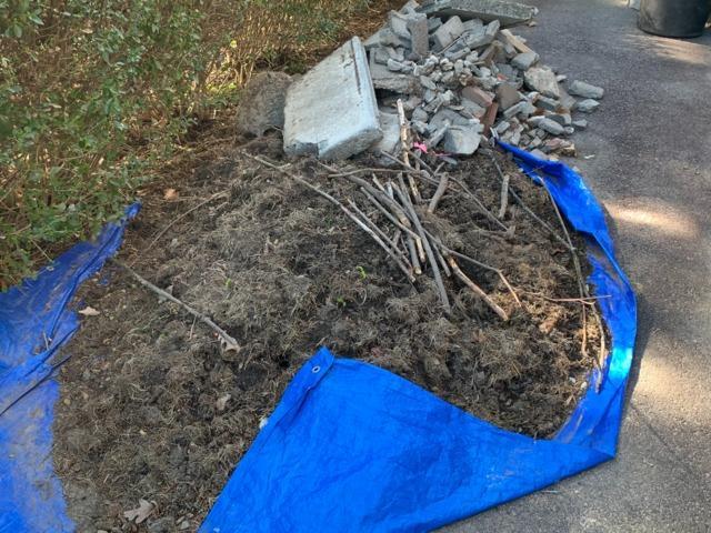 Yard Clean-up in Roslindale, MA