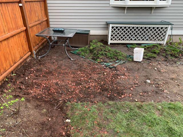 Watertown, MA Yard Debris Removal Service
