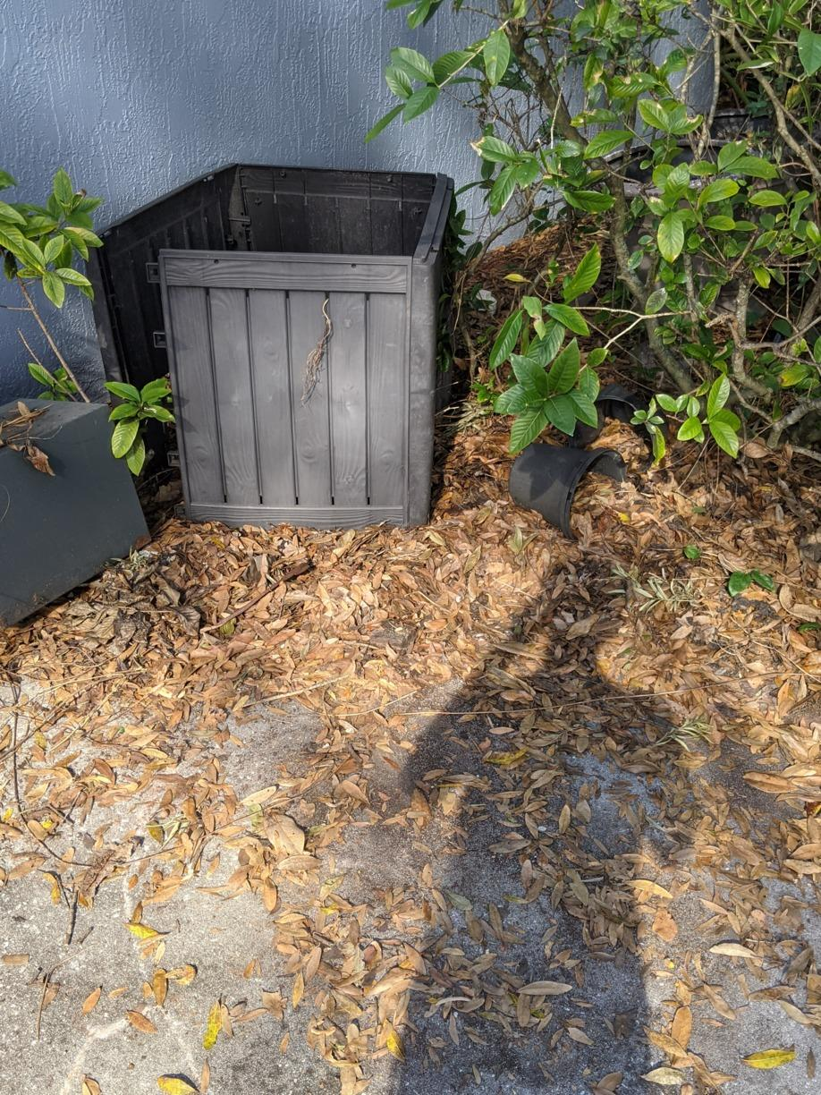 Safe Removal in Lutz, FL! - After Photo