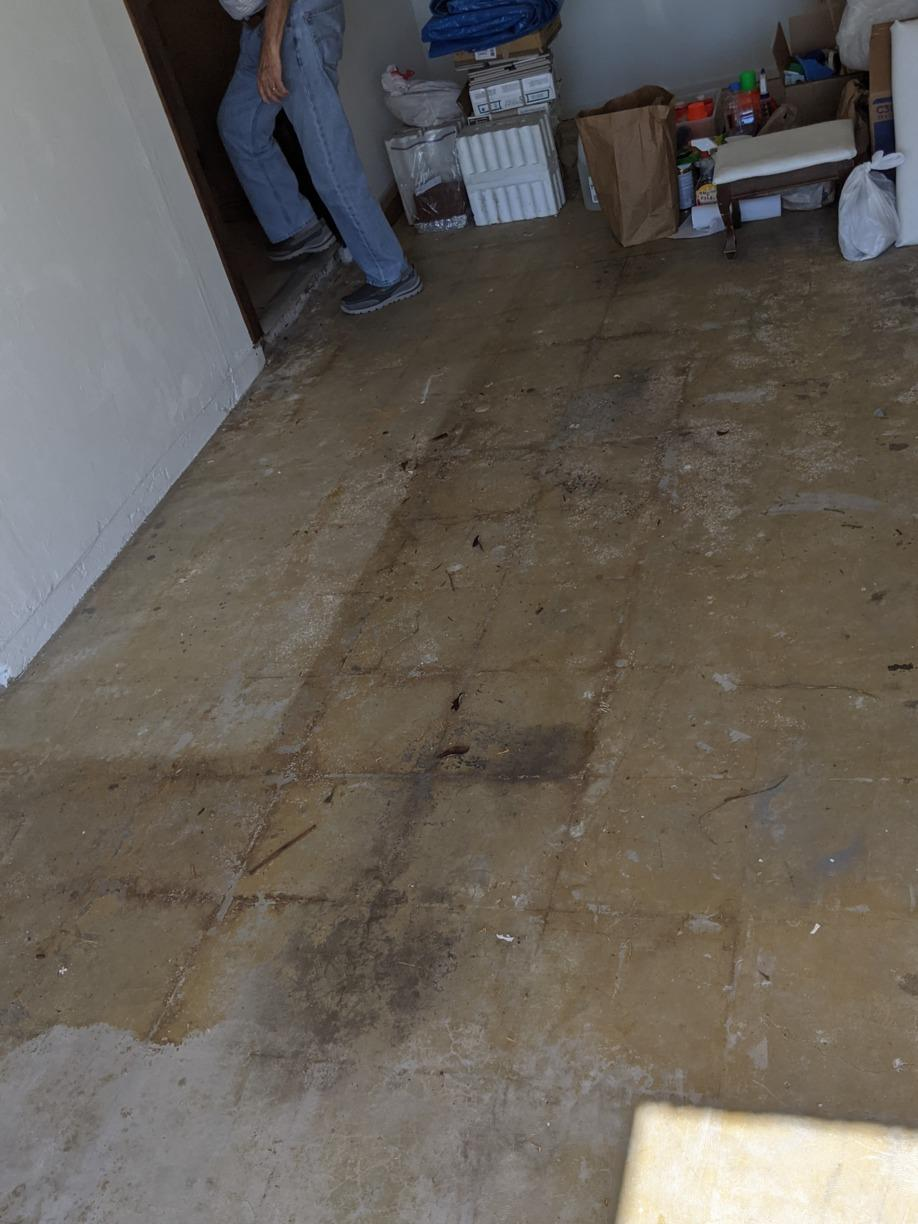 Garage Cleanout in New Port Richey, FL! - After Photo