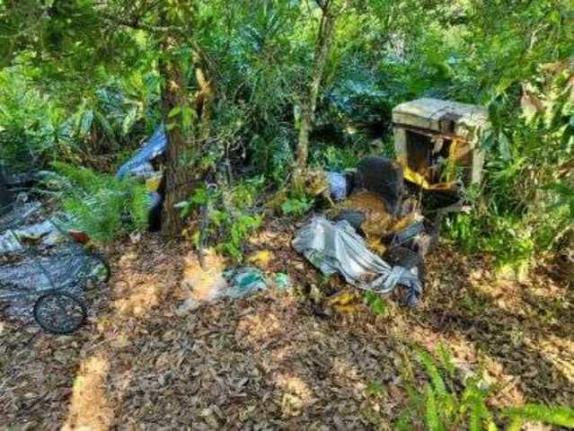 Lawnmower Removal in Odessa, FL!