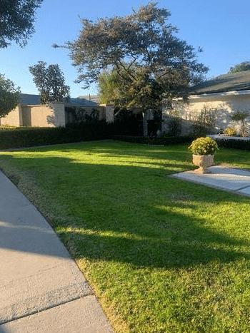 Curbside Pick up in Newport Beach, CA