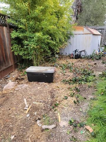 Yard cleanout in San Jose
