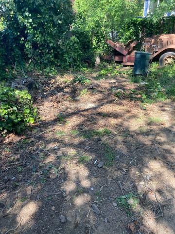 Backyard cleanout in Los Gatos, CA 95033, USA