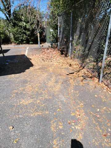 Commercial Cleanup Service in Morgan Hill, CA - After Photo