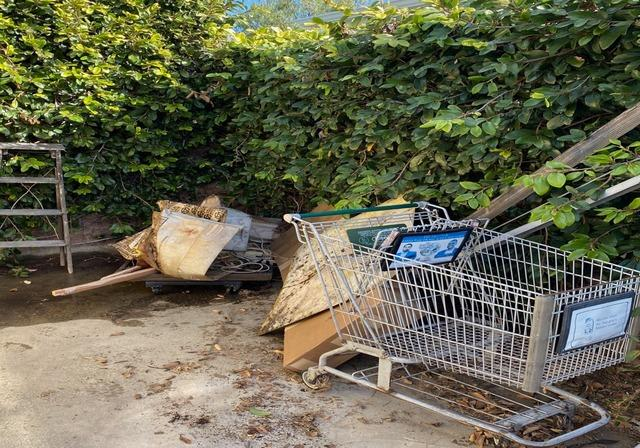 Backyard Cleanout - The best way to start a New Year! Los Angeles, CA