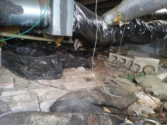 Crawl space clean out in Nashville, TN