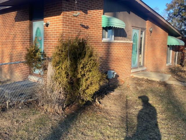 Yard Clean Up, Westland MI