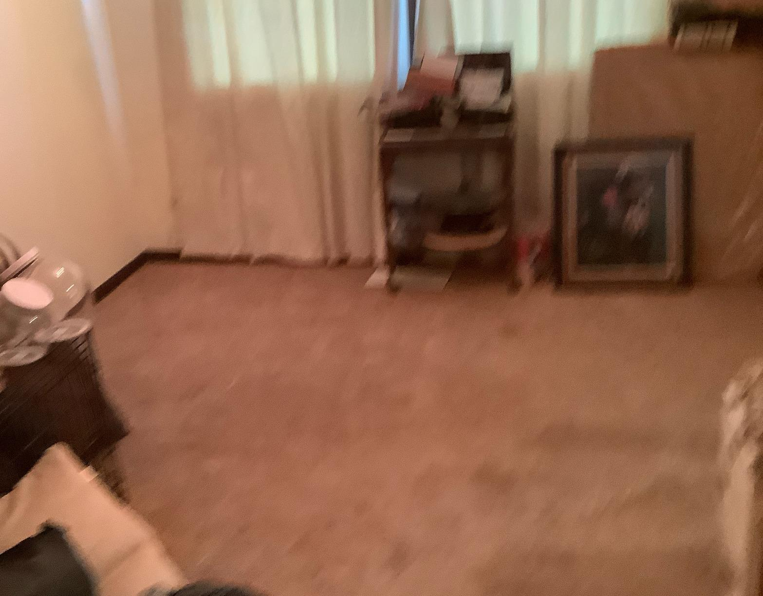 Furniture Removal in Bartlett, IL - After Photo
