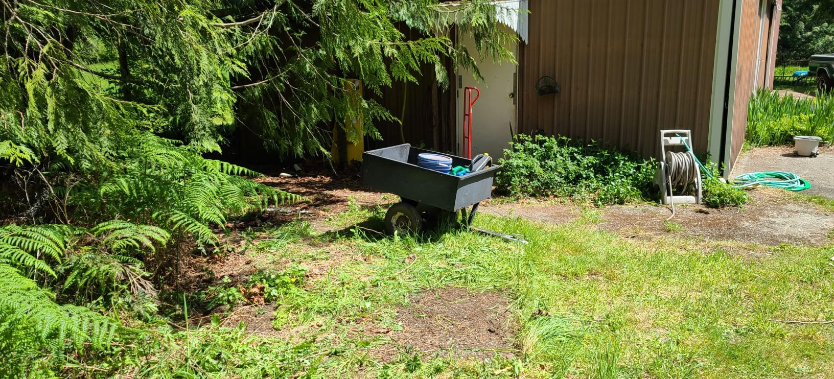 Junk Removal Services in Arlington, WA - After Photo