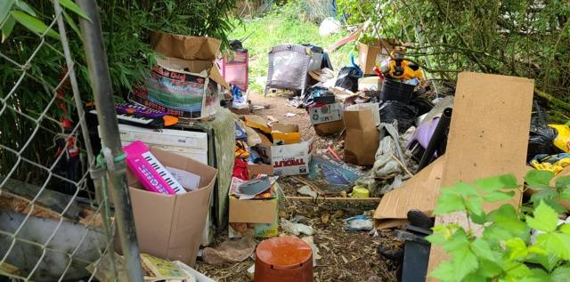 Hoarding Cleanup Services in Everett, WA