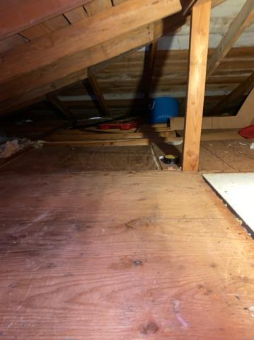 Attic and Basement Cleanout Services in Bothell, WA