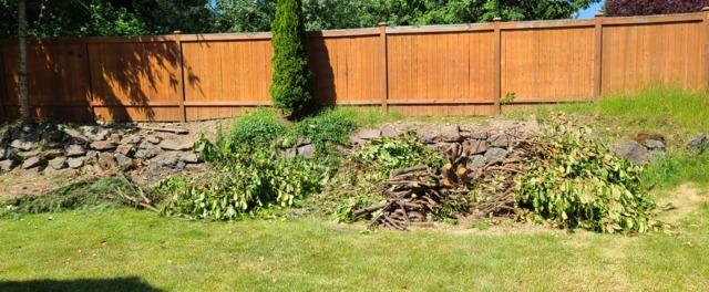 Yard Debris and Waste Removal Services in Everett, WA