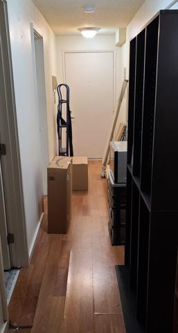 Furniture Removal Services in Seatle, WA