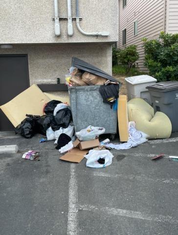 Junk Removal Services in Everett, WA