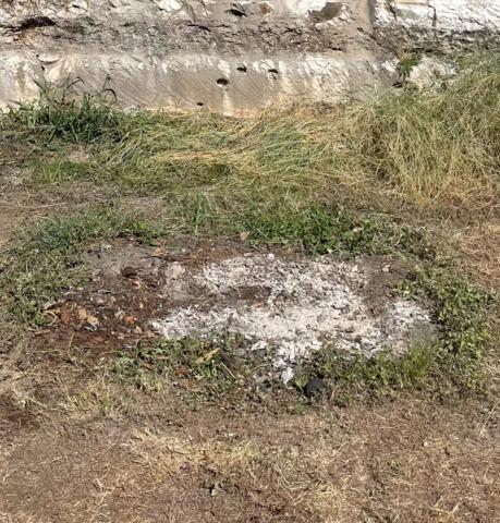 Yard Debris & Waste Removal - San Antonio, TX