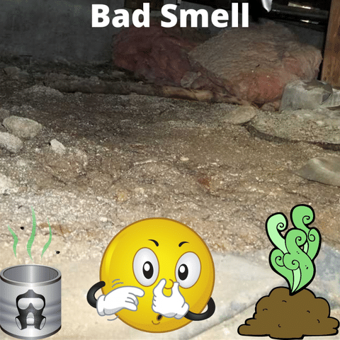 Identifying moisture issues in your crawl space even when it is dry - Image 3