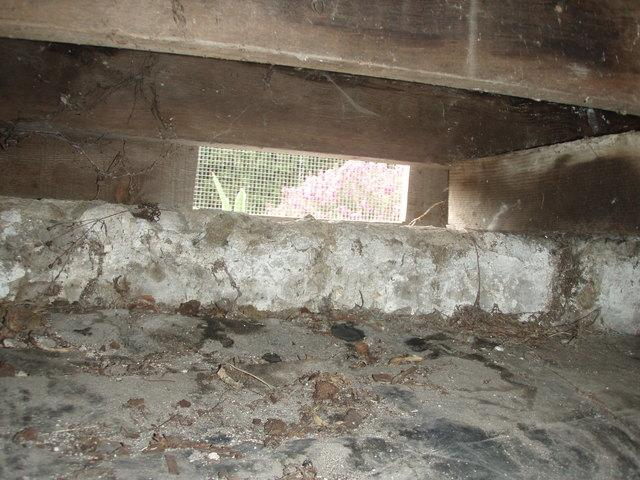 rotting vented crawl space