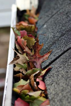 Clogged Gutters: Three Little-Known Issues That Are HUGE!