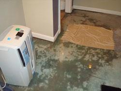Johns Waterproofing Transforms Basement - Image 2