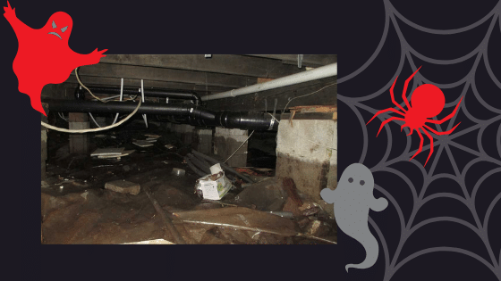 Don't let your basement be your horror story