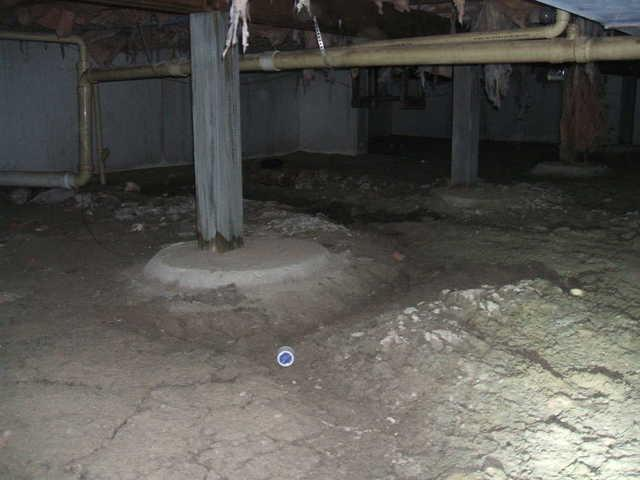Step 1: Get rid of the standing water  Standing water is harmful for many reasons. It creates a breeding ground for...