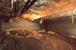 What You Should Know About Dirt Crawlspaces - Image 1