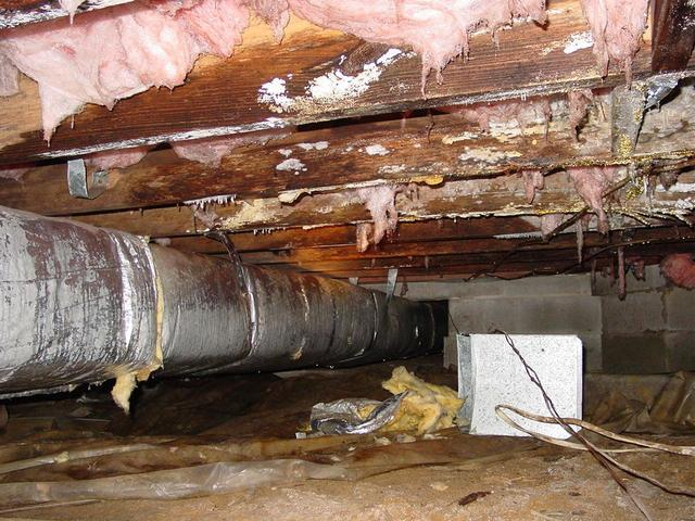 Mold in your Home from the Crawl Space