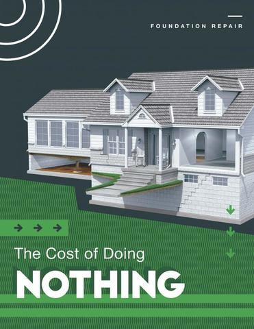 Cost of Doing Nothing - Image 1