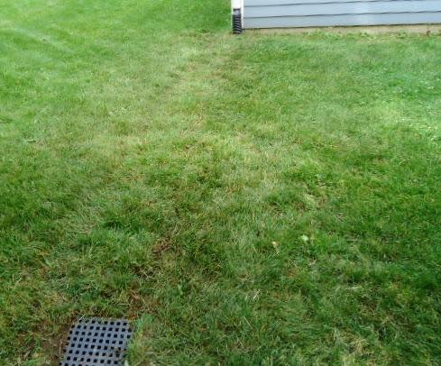 A freshly laid underground with grass seed, barely visible.  Our guys are professionals!!