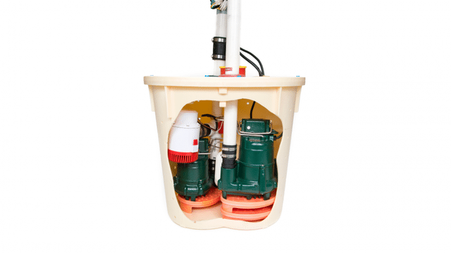 A Sump Pump That Will Change Your Life