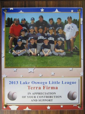 TerraFirma Lake Oswego Little League Team