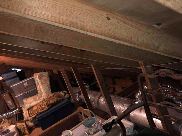 What causes Mold in the Attic & How can I Prevent it from coming back?