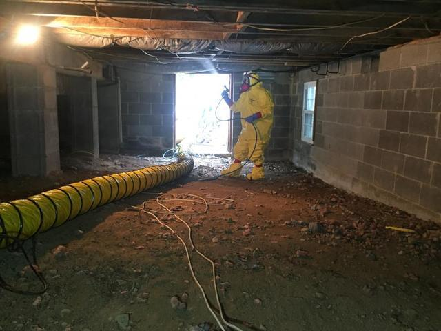 Applying Mold-X2 to crawl space joists