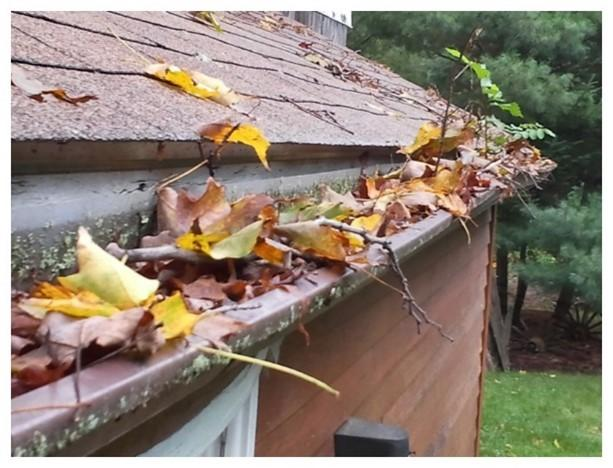 Traditional 5 inch gutters filled with leaves and debris