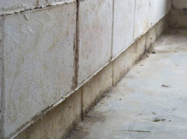 Bottom Wall Shear Foundation