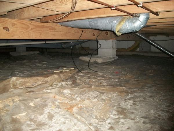 Belleville, IL dirt crawl space