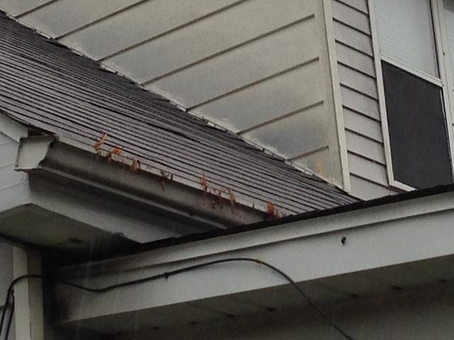 Collinsville IL Gutter Clogged with Leaves, Debris