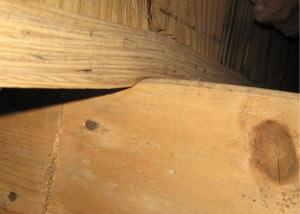 What Causes Foundation Problems - Image 2