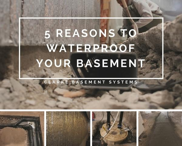 5 Reasons to Waterproof Your Basement - Control Mold, Avoid floods and leaks, Protect the foundation, Save on Energy, Protect...