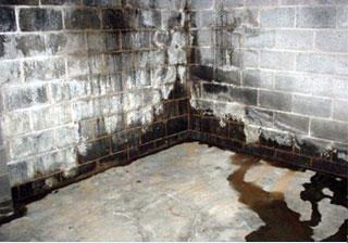 Ground Water Intrusion