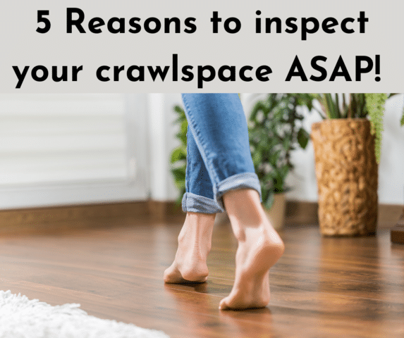 5 Reasons you need your crawlspace inspected ASAP