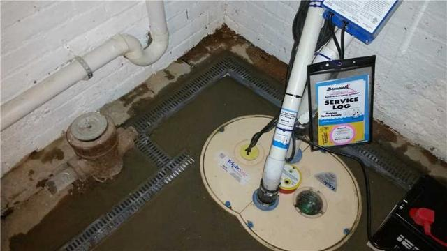 TripleSafe Sump Pump with water watch alarm.
