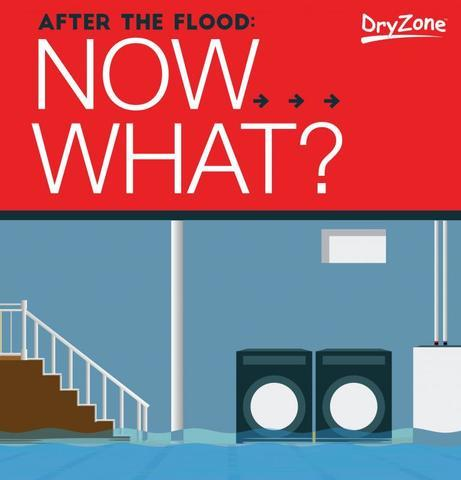 After the Flood: Now What?
