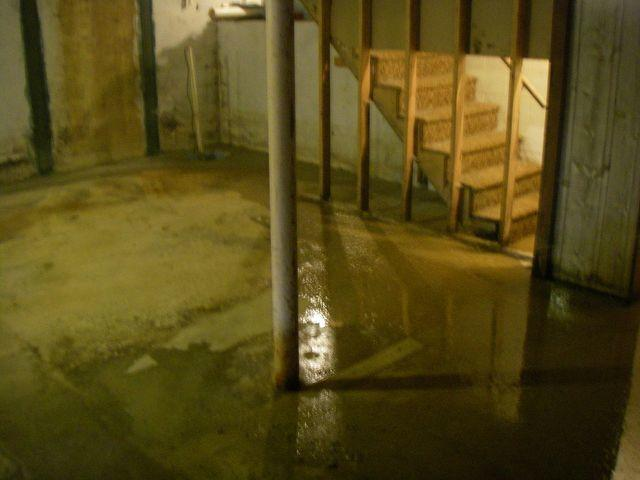 DryZone Can Fix and Finish Your Basement