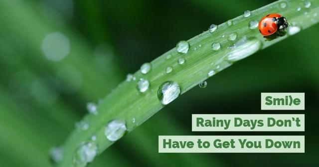 Does the rain have you singing the blues? Here are four quick and easy ways to help you make rainy...