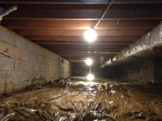 Heightened allergies or asthma symptoms due to crawlspace moisture