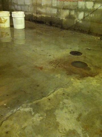 Wet Basement in Evansville, IN