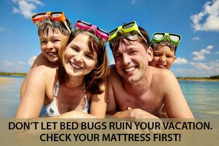 Ten Facts That Every Homeowner Should Know About Bed Bugs